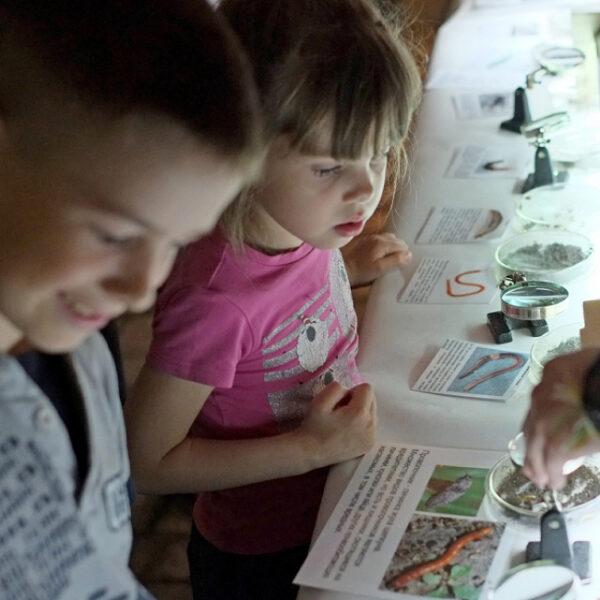 День защиты детей в Дарвиновском музее