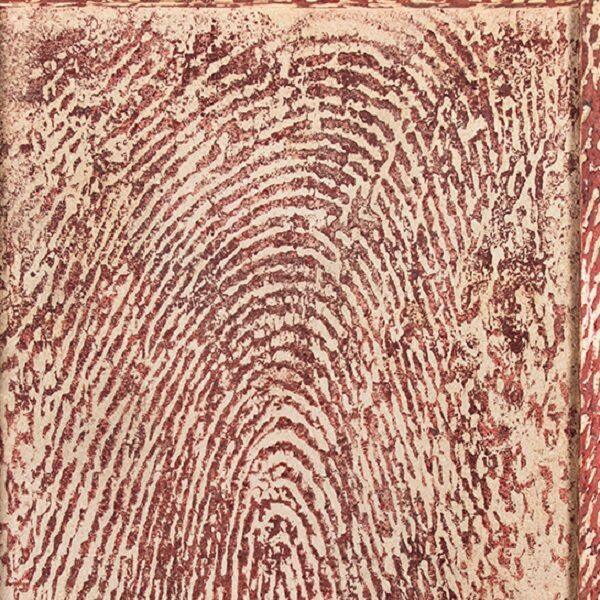 Выставка «Мэттью Брандт. Таинственный лес» в Эрарте